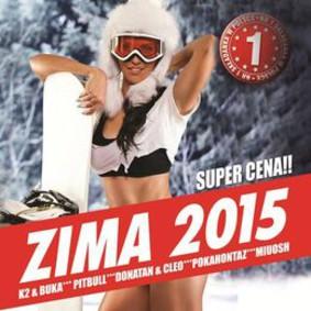 Various Artists - Zima 2015