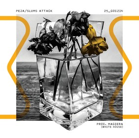 Peja/Slums Attack - 25_godzin