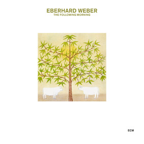 Eberhard Weber - The Following Morning Touchstones