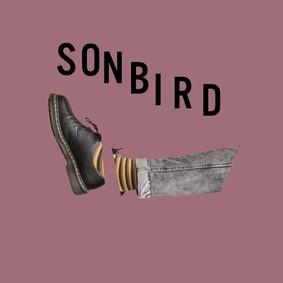 Sonbird - Głodny