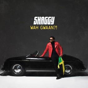 Shaggy - Wah Gwaan