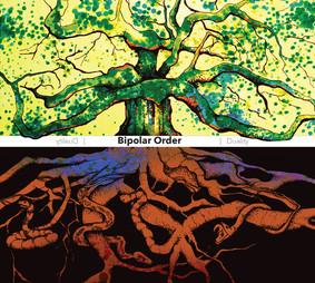 Bipolar Order - Duality