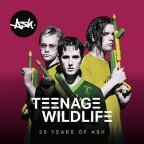 ASH - 25 Years of Ash