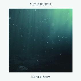 Novarupta - Marine Snow