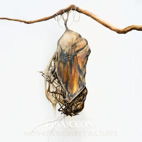 Grayceon - Mothers Weavers Vultures