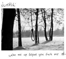 Świetliki - Wake Me Up Before You F**k Me