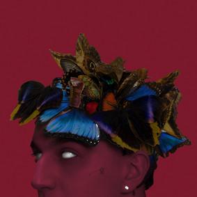 Sobel - Pułapka na motyle