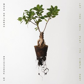 Caroline Shaw & Sō Percussion - Let the Soil Play Its Simple Part