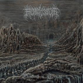 Mortiferum - Preserved In Torment