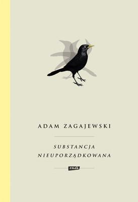 Adam Zagajewski - Substancja nieuporządkowana